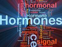 Hormones, wellness, bioidentical hormones, wellness by design, carol Petersen, nutrition, hormone balance, hormone imbalance, hormone coaching, certified nutritional practitioner, integrated medicine, take charge of your health, pharmacy compounding, hormone therapies, bioidentical hormone therapies, hydrocortisone, health lifestyle